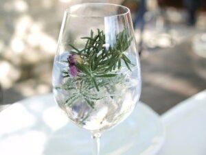 Gin and Tonic Healthy Christmas
